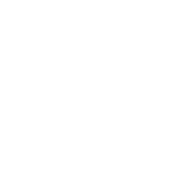 New york lg