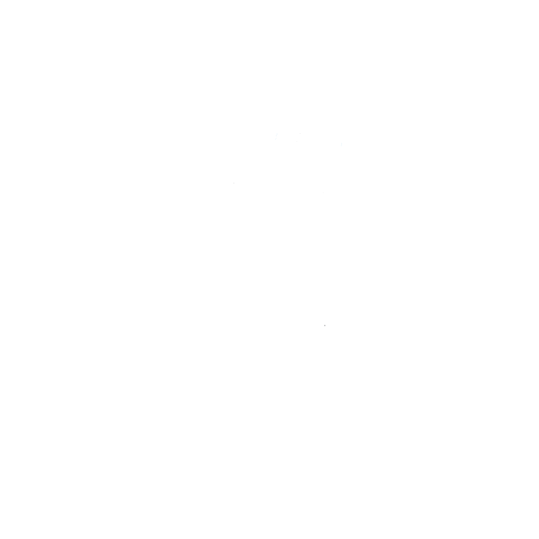 Scooter lg