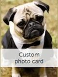 Custom front photo sample 2